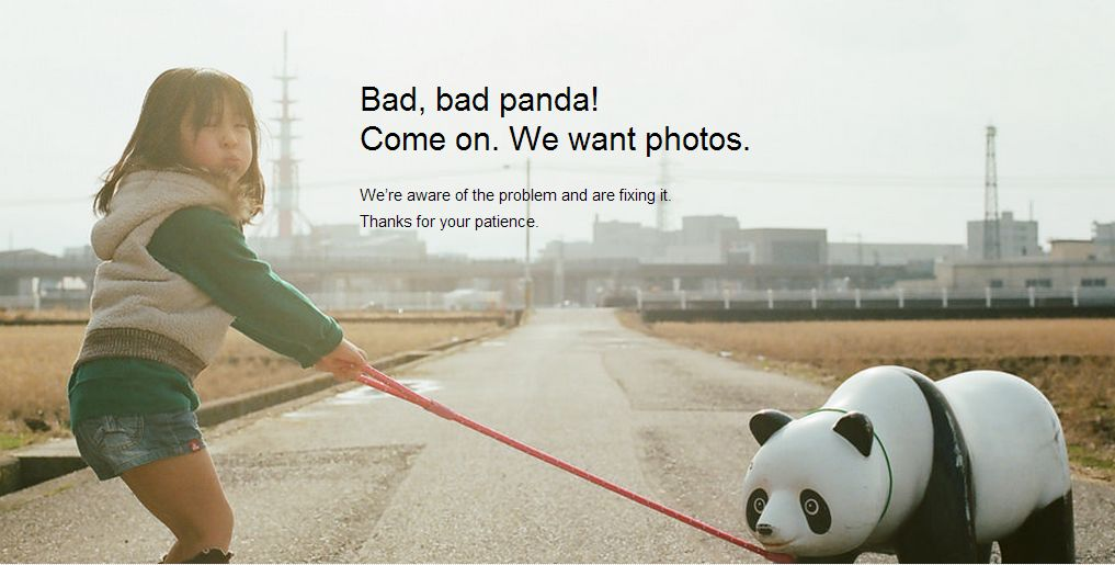 incubo panda Flickr