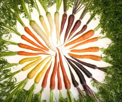 Carrots_of_many_colors (wikipedia)