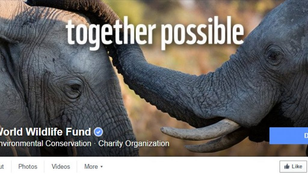 WWF DONATE Facebook