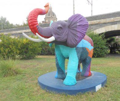 elefantino colorato, liotru, Salvo Ligama, Catania
