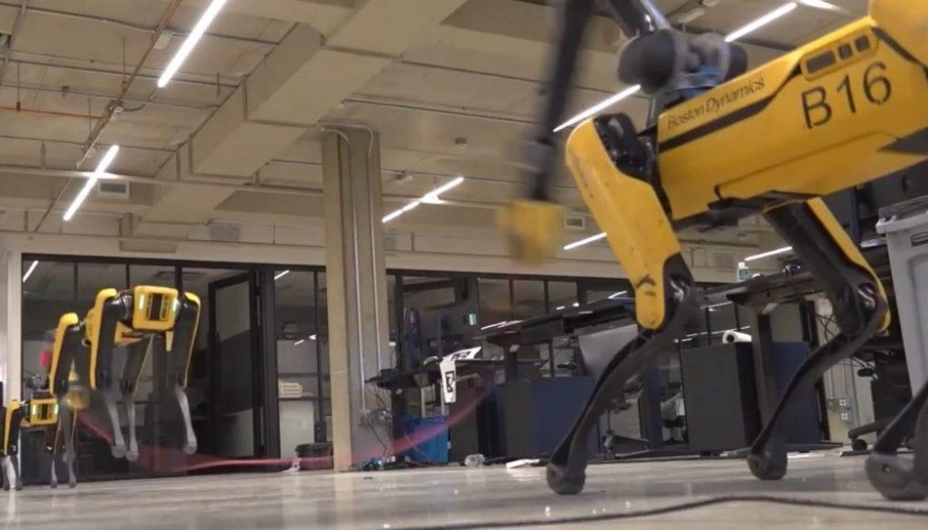 cane robot salta corda